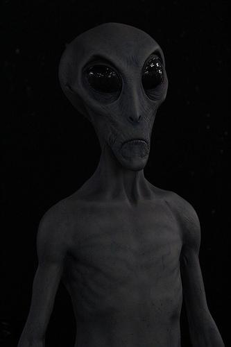 Alien Grey 2